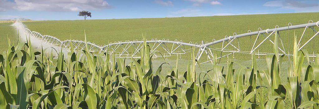 Caderno Agrícola - Pivôs irrigação